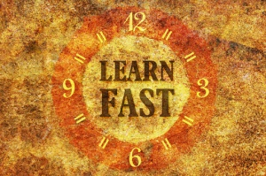 Learn fast from your expert about the area of expertise